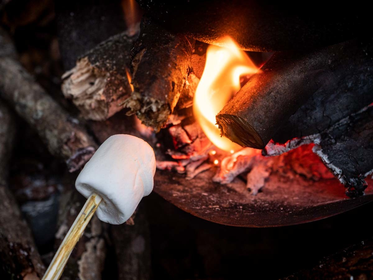マシュマロを焚き火で焼く