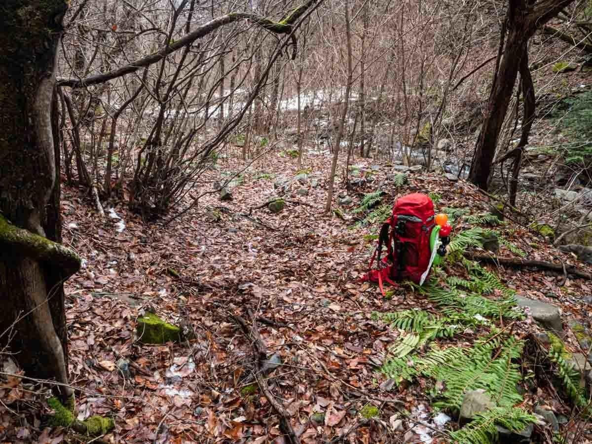 森の中に置かれたザック