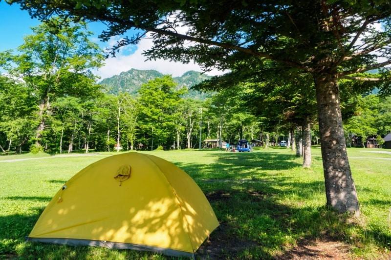 真夏のキャンプで木陰にテントを張る