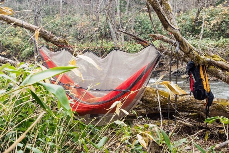森の中で蚊帳を付けたハンモック