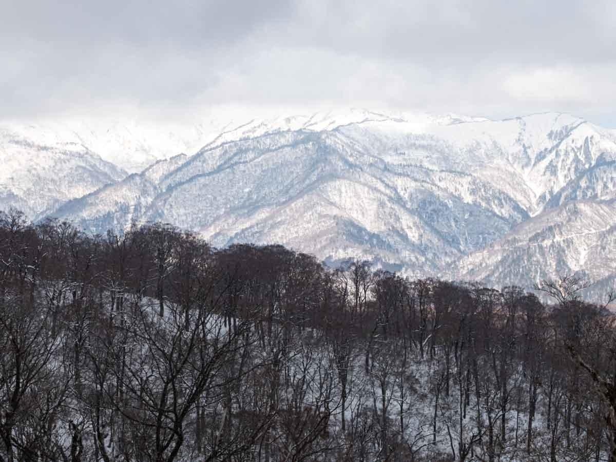 大日ヶ岳から見た白山