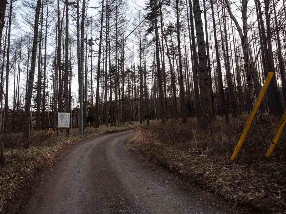 美濃戸口林道