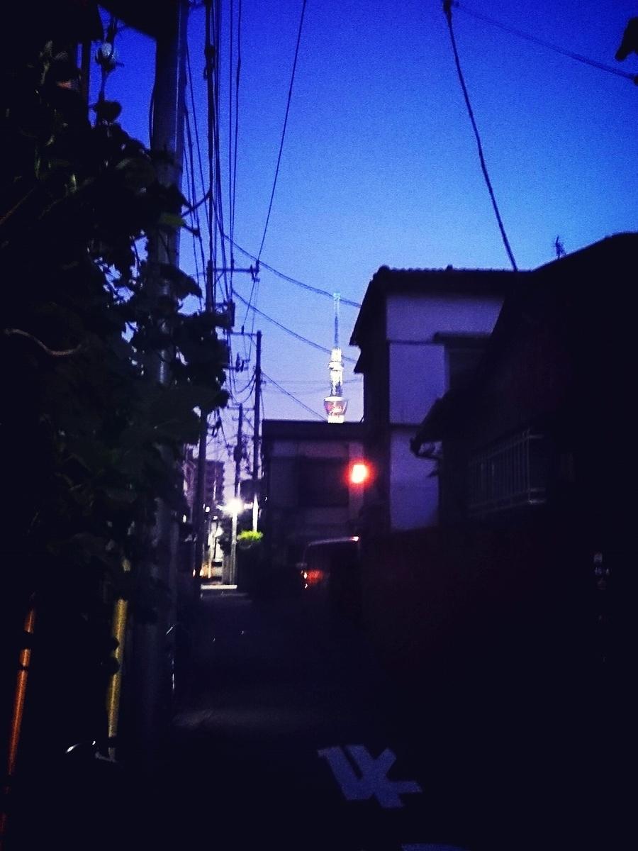 f:id:zetumetu_hakase:20190808212310j:plain