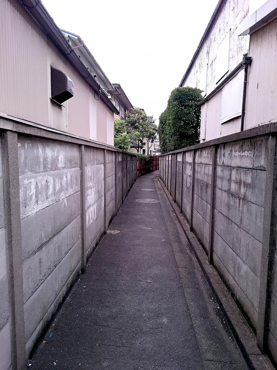 f:id:zetumetu_hakase:20191024233221j:plain