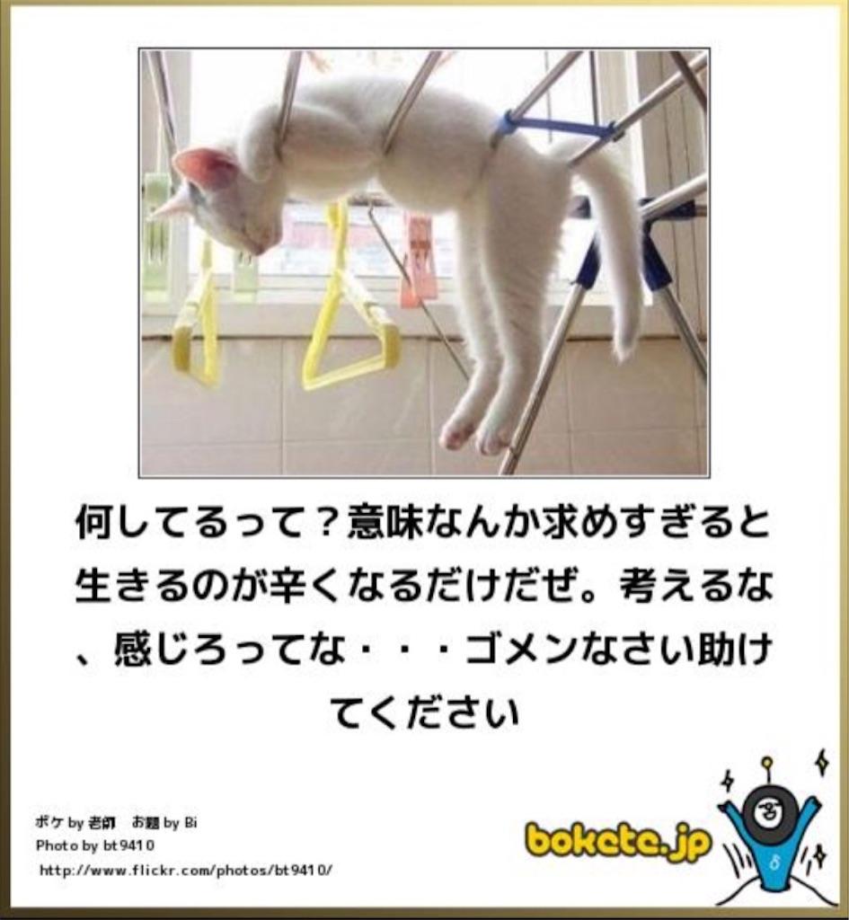 f:id:zhimei11:20161202012645j:image