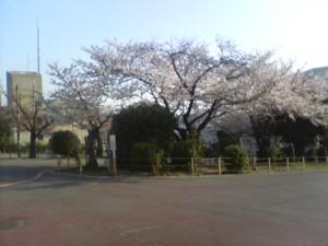 f:id:zhong-zau:20100403072402j:image