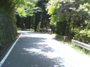 f:id:zhong-zau:20100516120810j:image