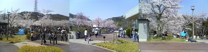 f:id:zhong-zau:20110411231308j:image
