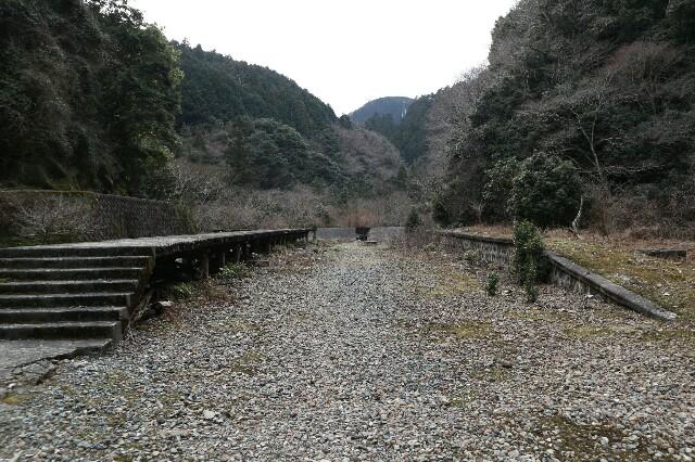 f:id:zhongdanhai:20170314013341j:image