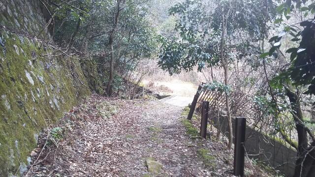 f:id:zhongdanhai:20170331024902j:image