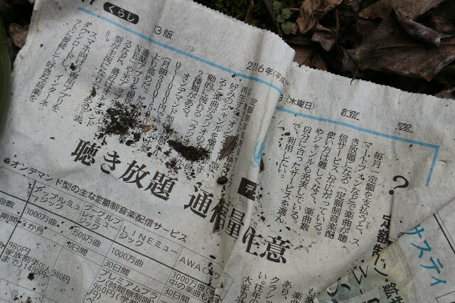 f:id:zhongdanhai:20170401013316j:image