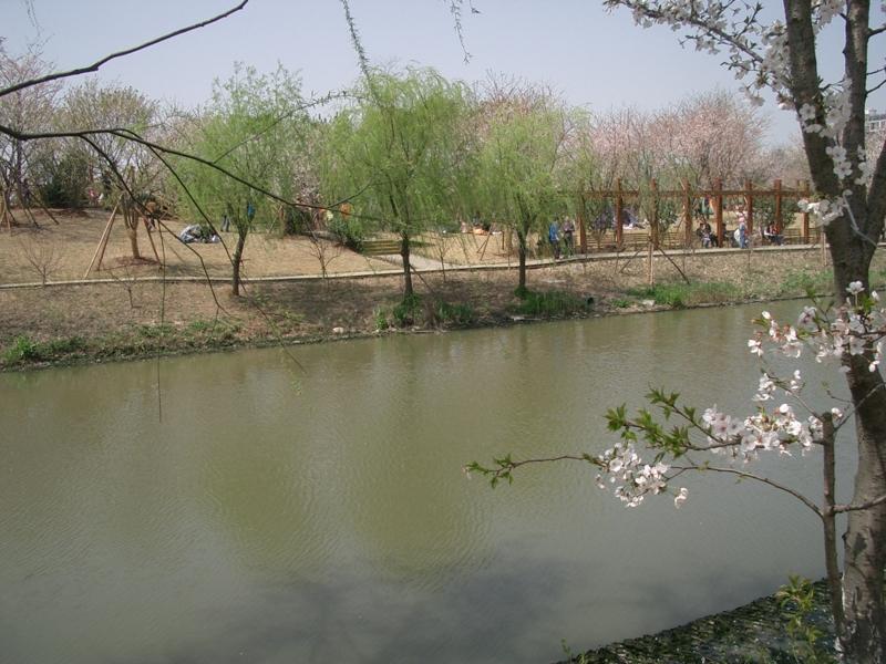 f:id:zhongwen:20120405084926j:image