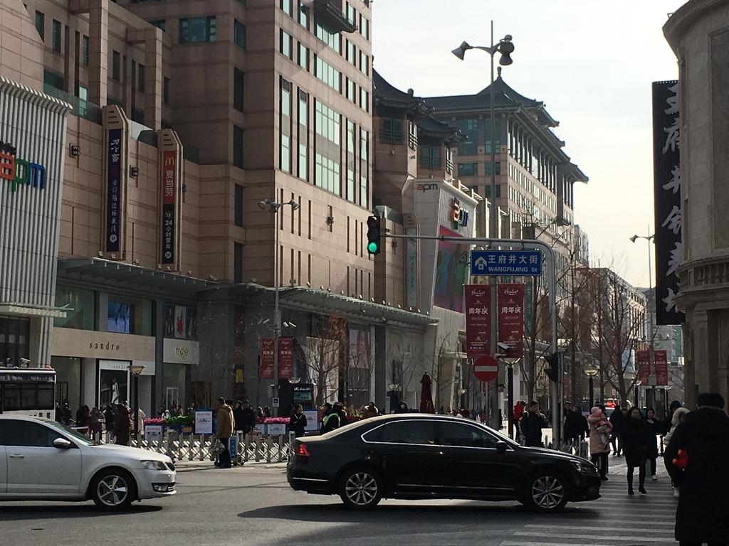 f:id:zhuang-yuezi:20190210165510j:plain
