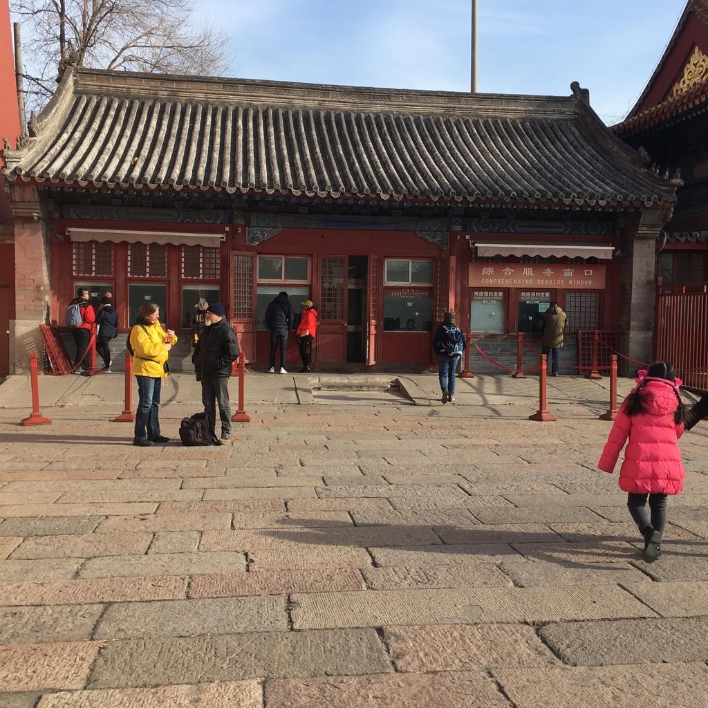 f:id:zhuang-yuezi:20190210165711j:plain