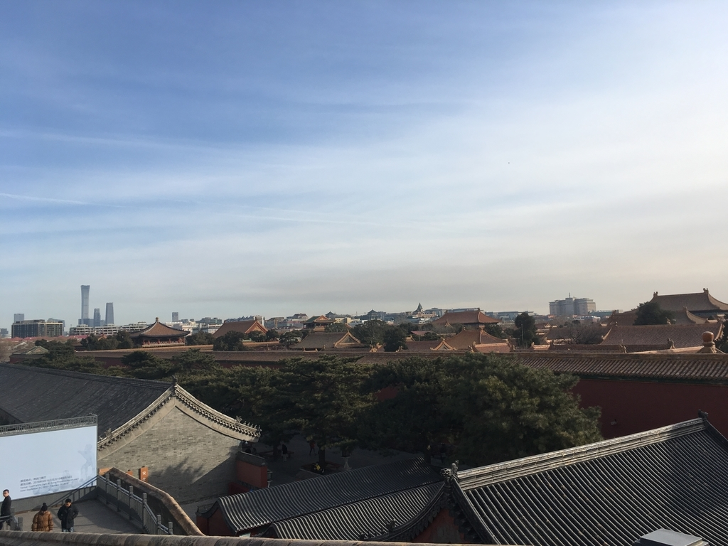 f:id:zhuang-yuezi:20190210171226j:plain