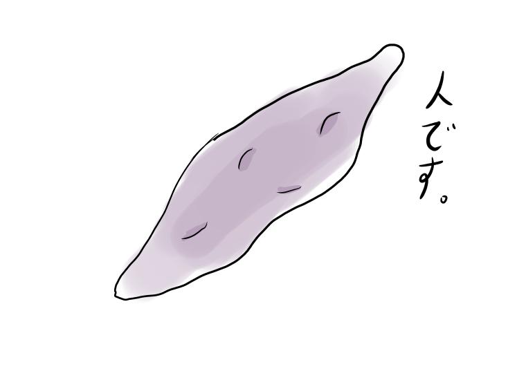 f:id:zihyo:20171025194339j:plain