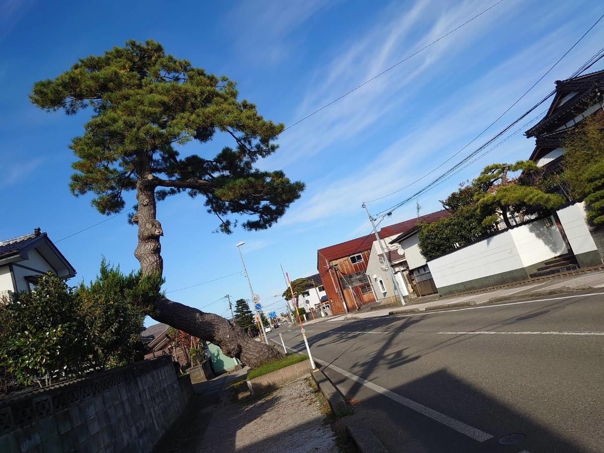 f:id:zimoshiru-joetsu:20201123204322j:plain