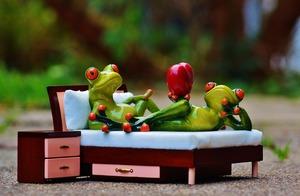 frog-1073356_1920.jpg