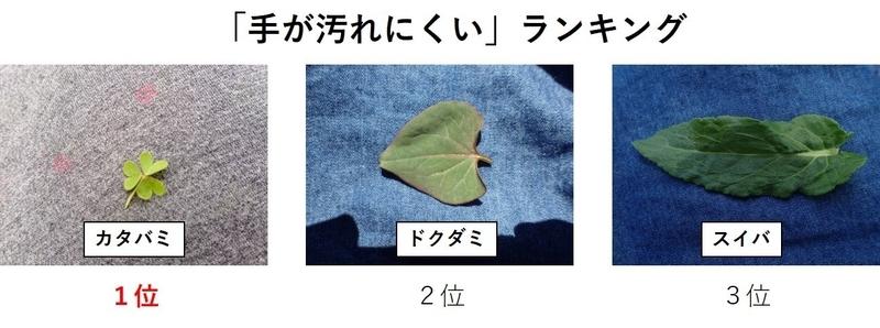 f:id:ziyukenkyu_Lab:20200604153145j:plain