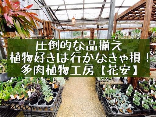 f:id:zizichan1103:20200727191230j:image