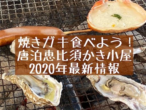 f:id:zizichan1103:20201108174230j:image