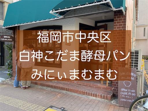 f:id:zizichan1103:20210221181503j:image
