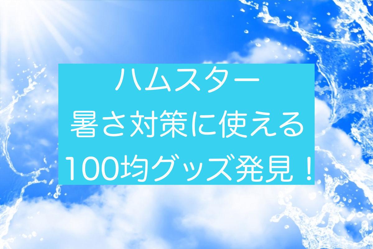 f:id:zizichan1103:20210522154351j:plain