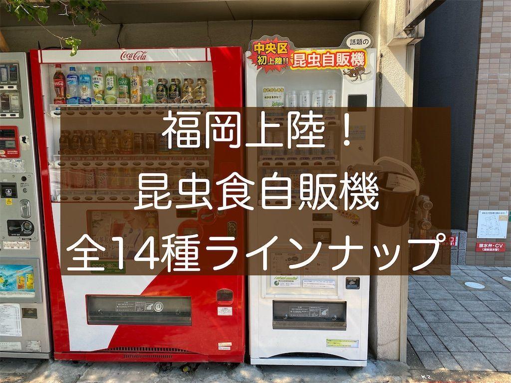f:id:zizichan1103:20210530155627j:image