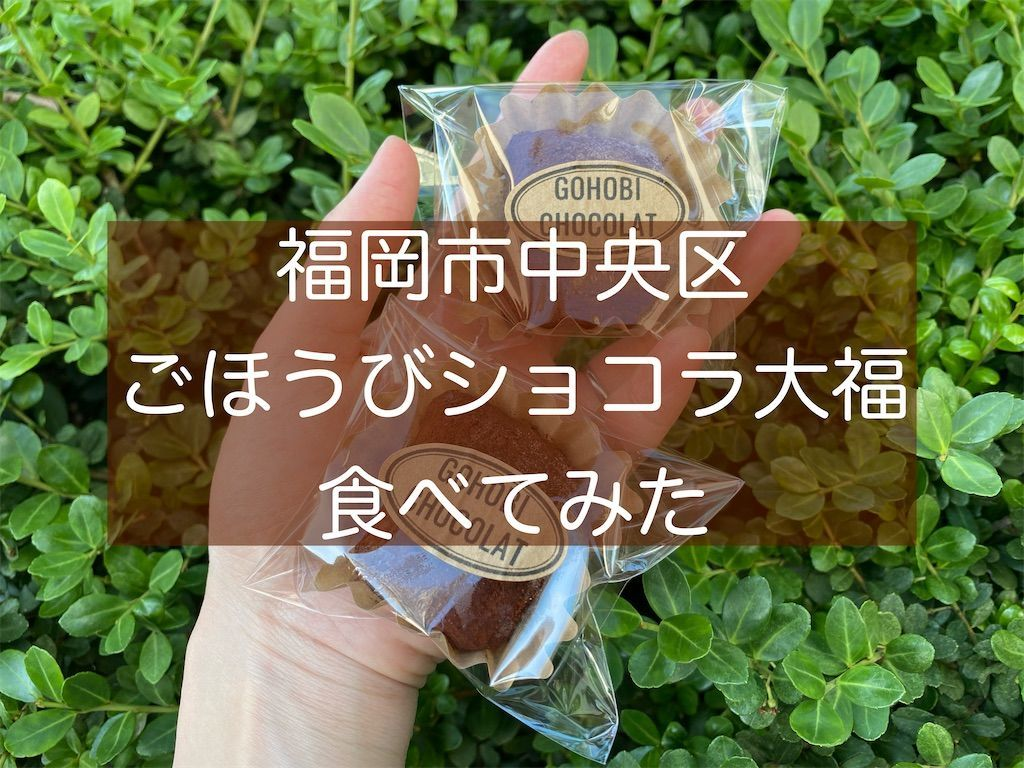 f:id:zizichan1103:20210610175227j:image