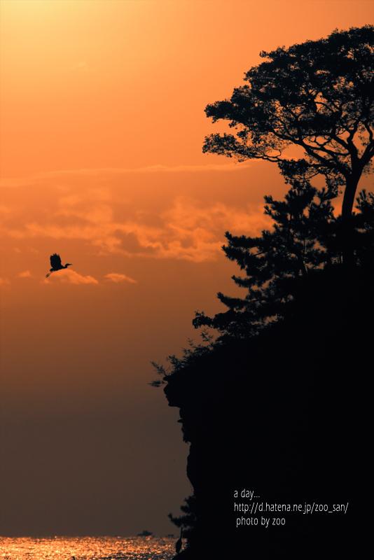 f:id:zoo_san:20110927174438j:image:w360