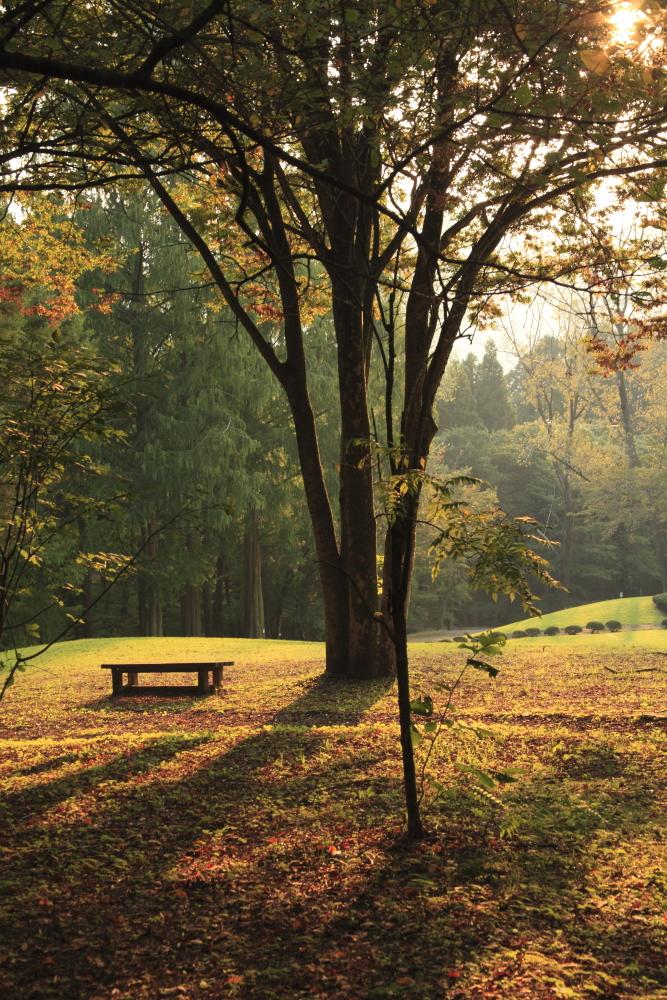 f:id:zoo_san:20111008161111j:image:w360