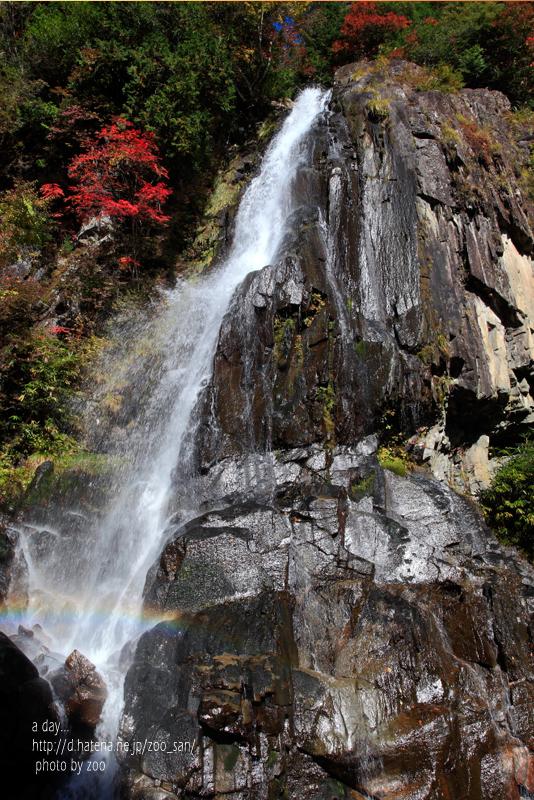 f:id:zoo_san:20111020120646j:image:w360