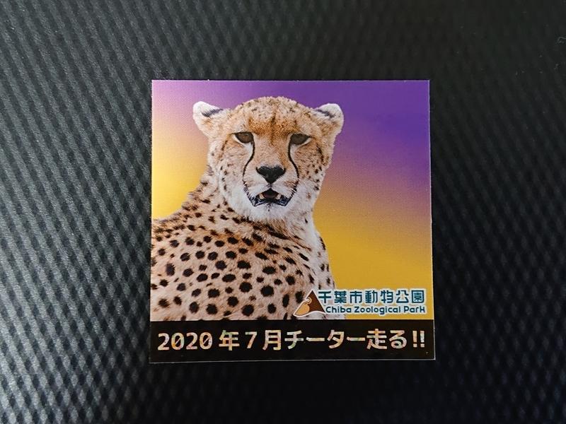 f:id:zoonimal:20200906173153j:plain