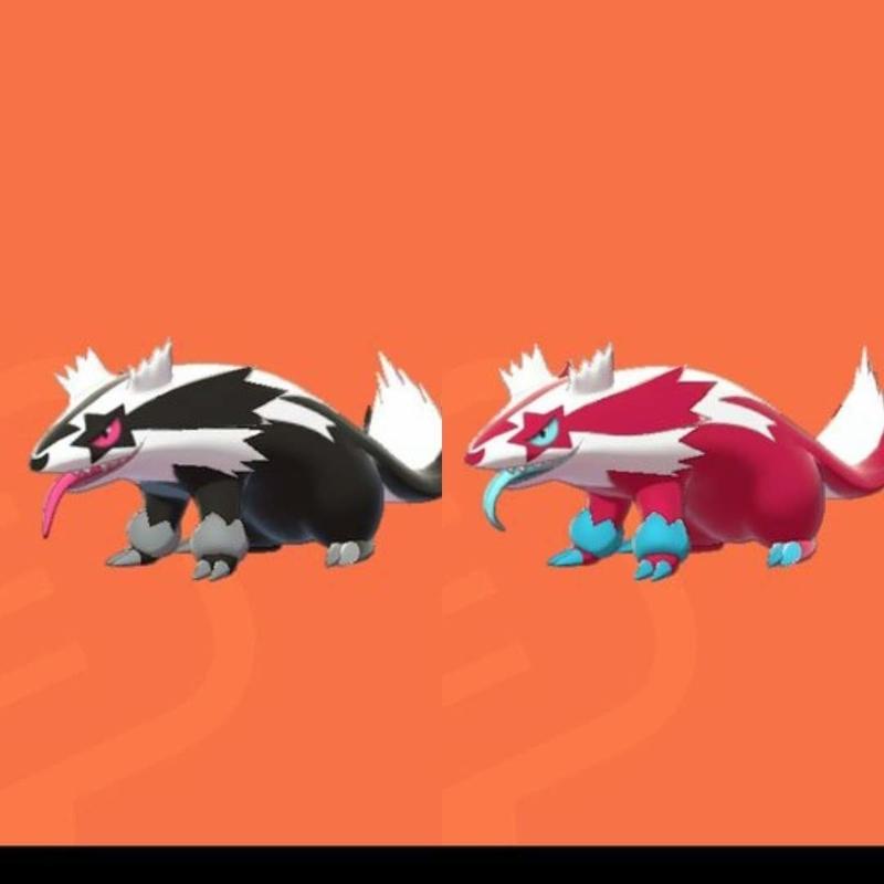 f:id:zoonimal:20201129154847j:plain