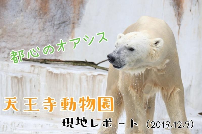 f:id:zoonimal:20210316143857j:plain