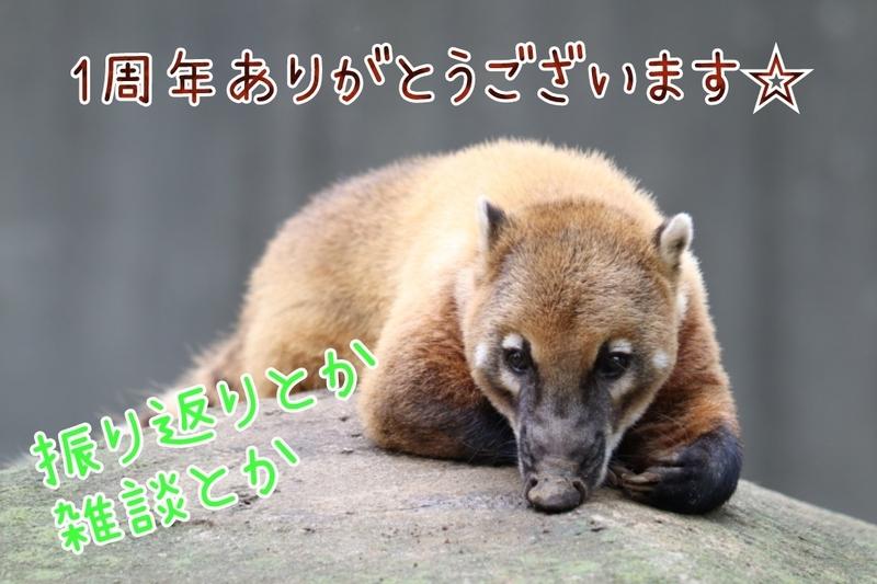 f:id:zoonimal:20210509183717j:plain