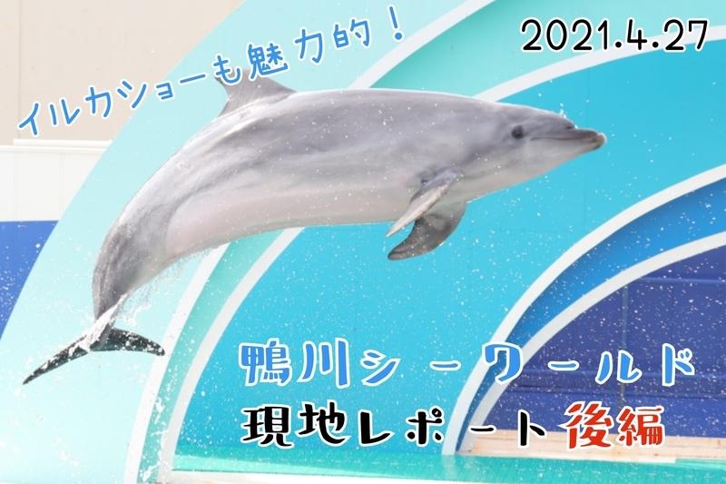f:id:zoonimal:20210613021001j:plain