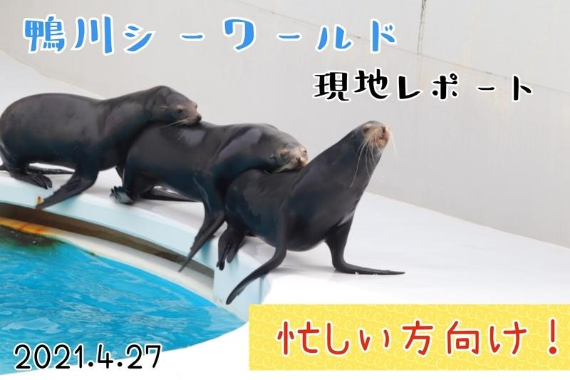 f:id:zoonimal:20210613171950j:plain