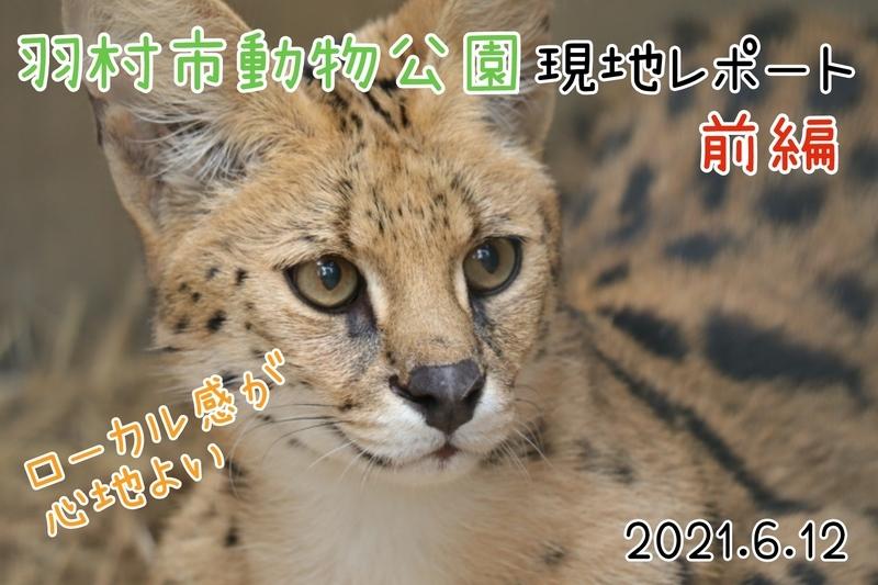 f:id:zoonimal:20210627103035j:plain