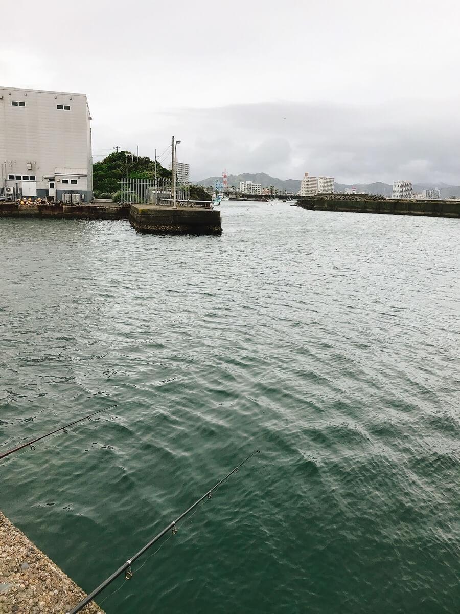 鴨川漁港 釣り