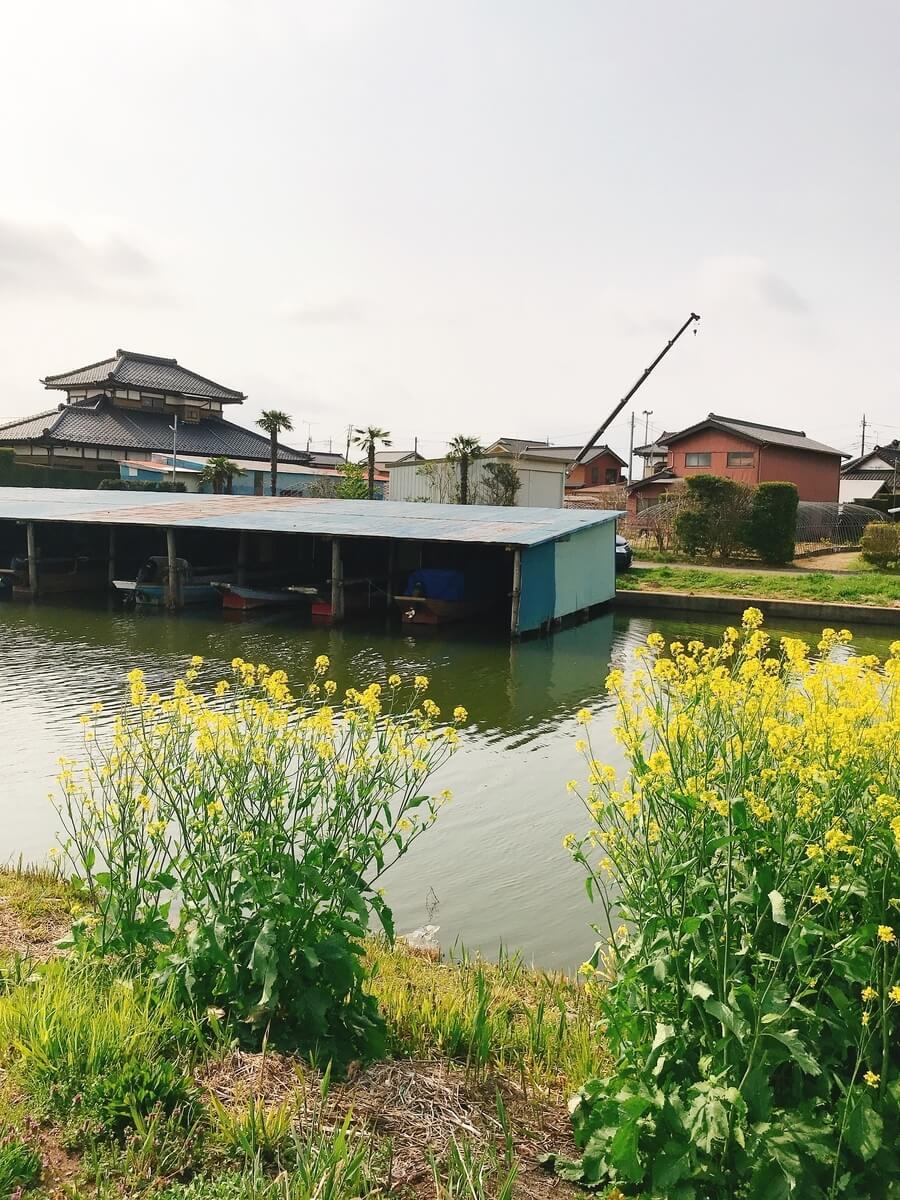 霞ヶ浦水系 ボート乗り場
