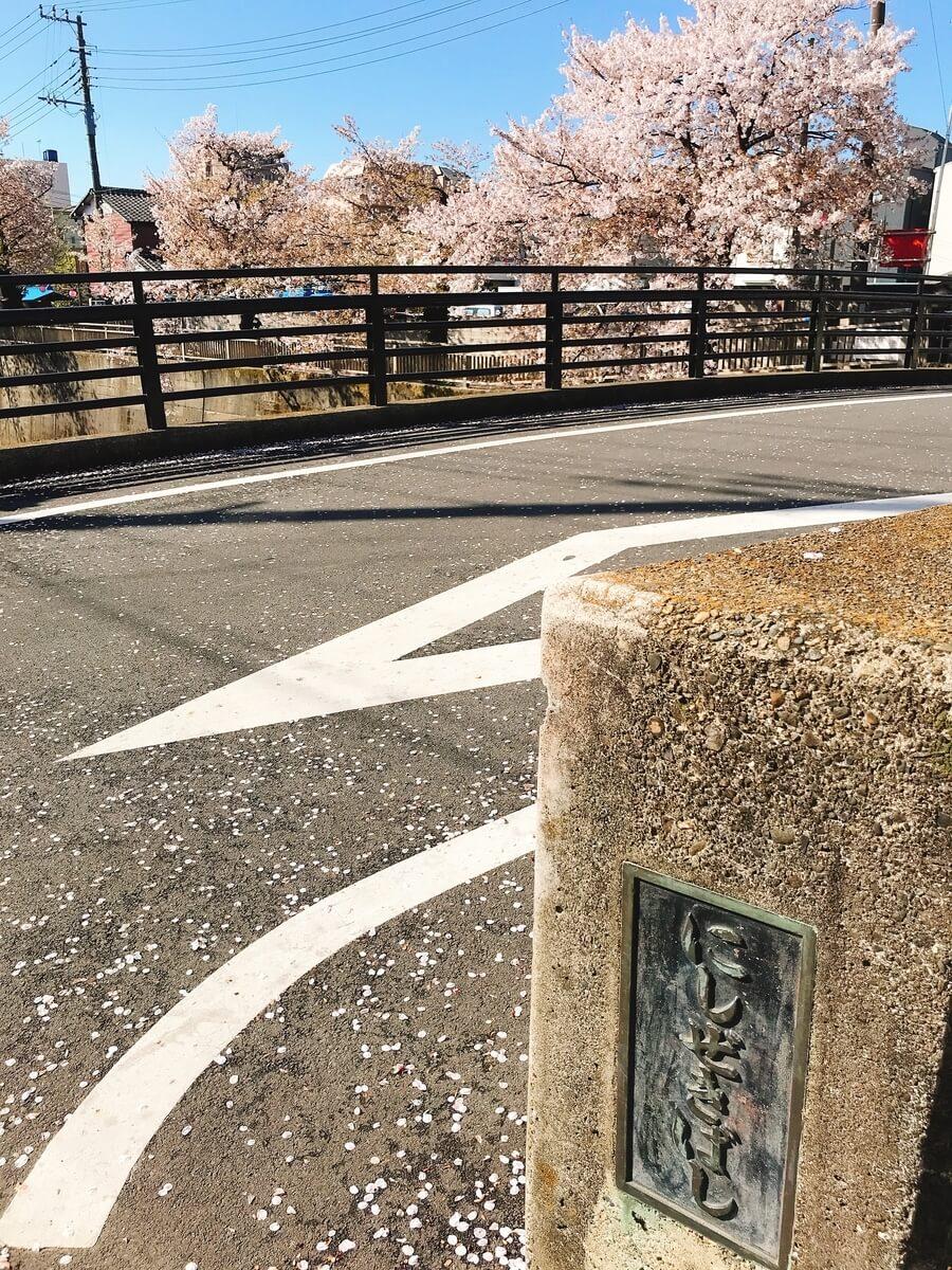 石神井川 西堰橋の桜