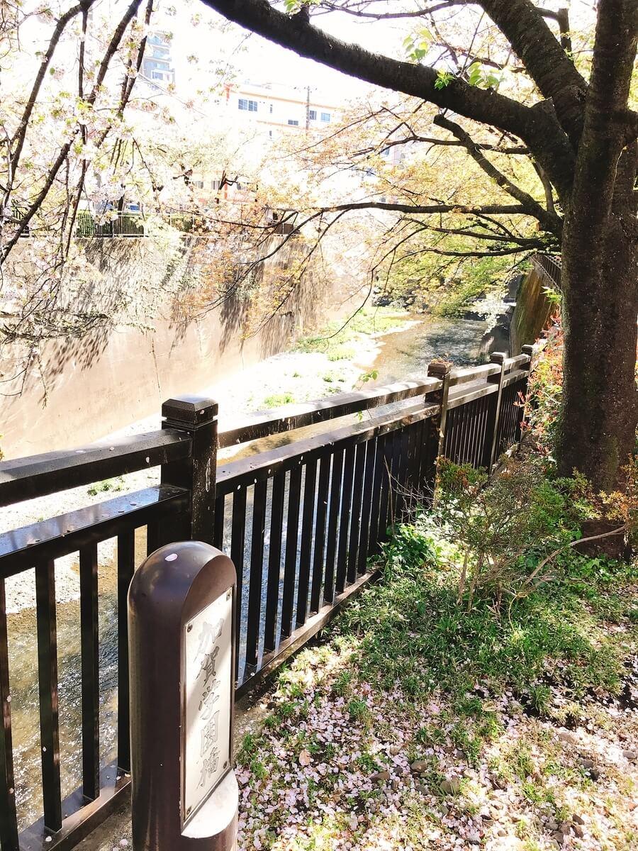 御成橋の石神井川