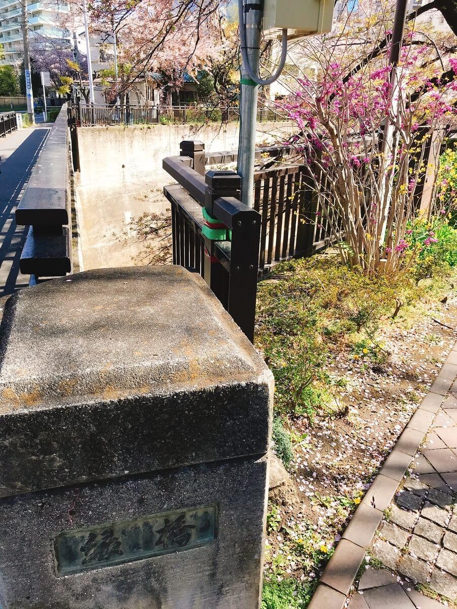 緑橋(みどりばし)の石神井川