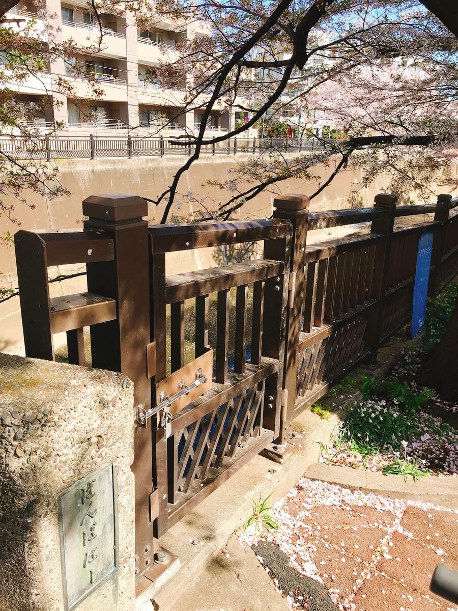 石神井川 番場橋