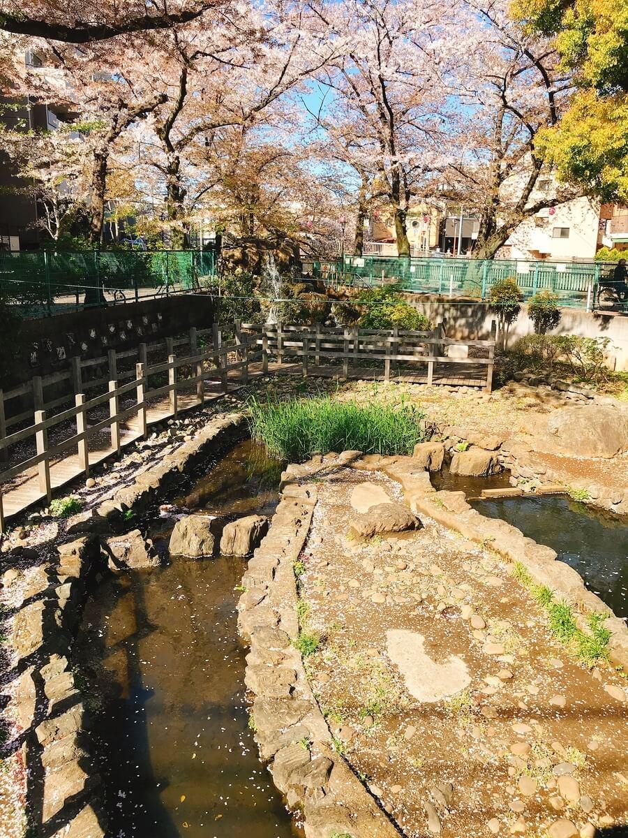 石神井川 氷川釣り堀公園