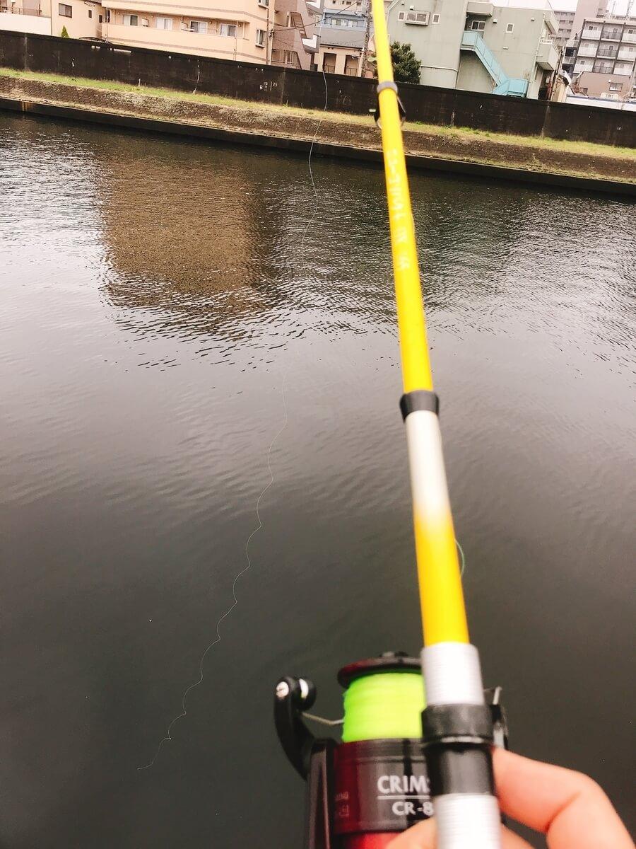 新河岸川釣り