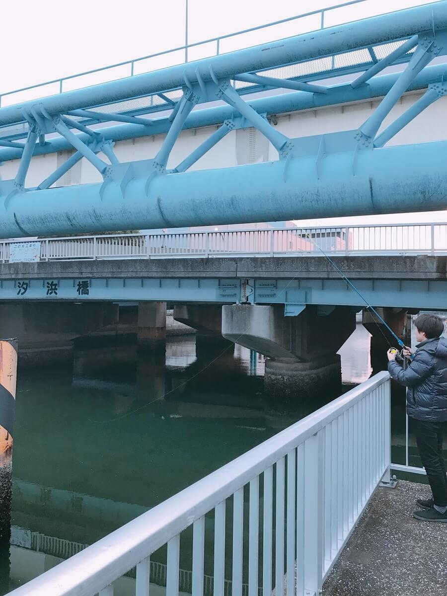 汐浜橋シーバス