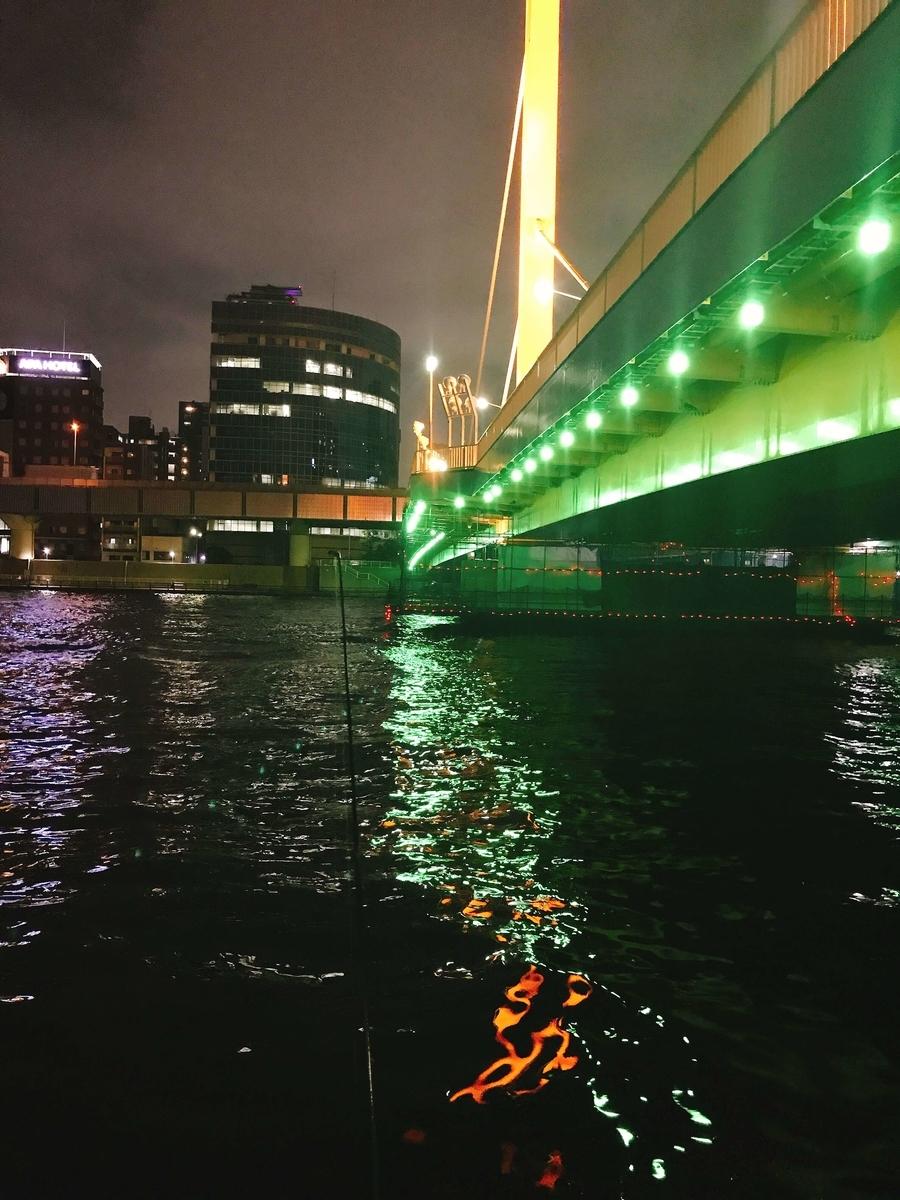 隅田川新大橋シーバス