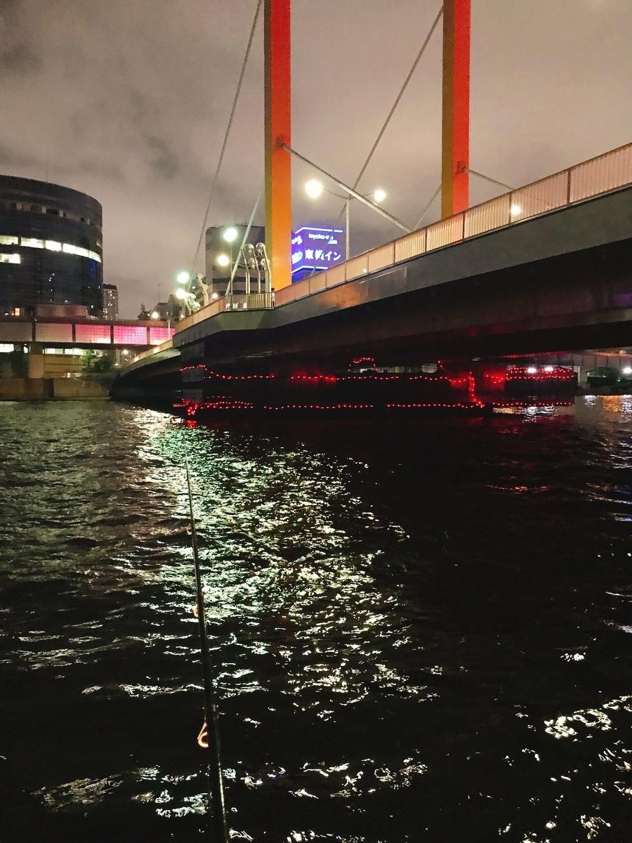 隅田川新大橋でシーバス